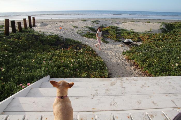 la joya ensenada beach house